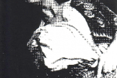 Motchia